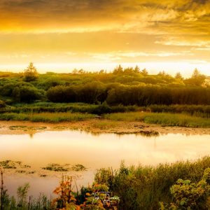 Golden sunset over lough waskel